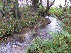 restauration écologique du ruisseau saint vaast