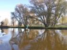 Pêcheur sur le Marais Audomarois