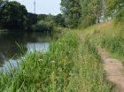 restauration écologique de l'étang du 14 juillet
