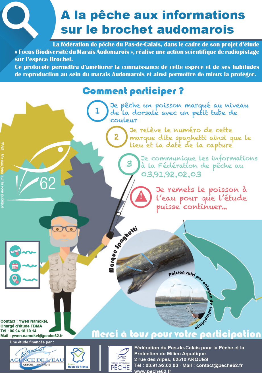 Sciences participatives : à la pêche aux informations sur le brochet audomarois